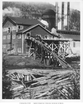 Lumberton. BC Spruce Mills, Logs Going Up Jack-Ladder