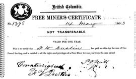 Free Miner's Certificate