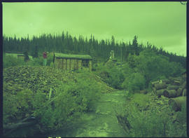 Abandoned Gold Mine, McKee Creek