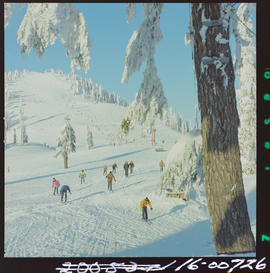 Skiing On Grouse Mountain, North Vancouver