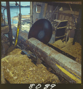 Cutting Logs, Pulp Mill, Prince Rupert