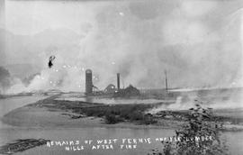 """Remains of West Fernie and Elk Lumber Mills after the fire""."