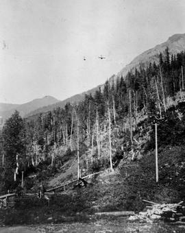 Aerial tramway to the Lanark mine, Laurie mining camp.