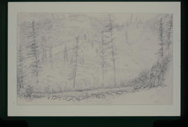 [Fraser River Camp At Tilton Creek, M Division, C.P.R.S.]
