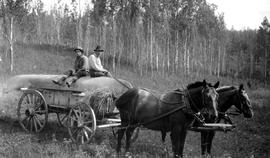 Survey team's freight wagon loaded with a canoe on the Ootsa-Cheslatta trail; Knox and McLean.