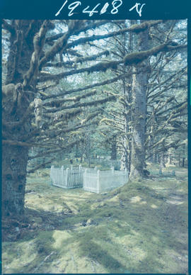 Masset Cemetery Queen Charlotte Islands