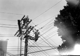 BC Electric Linemen At Work, Victoria.