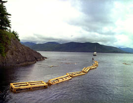 Totem Pole Expedition, Anthony Island Queen Charlotte Island