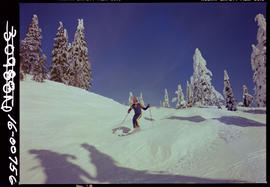 Skiing At Cypress Park, West Vancouver.