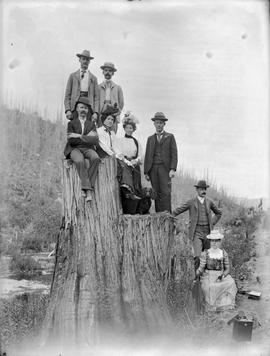 Group posed on a large stump.