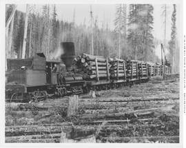 Shay Engine With A Load Of Logs At Canal Flats