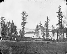 Island in Esquimalt Harbour, known variously as Magazine Island and Cole Island.