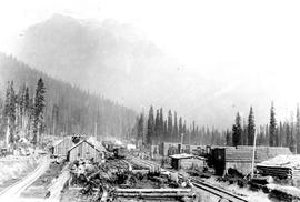 Rogers Pass Village