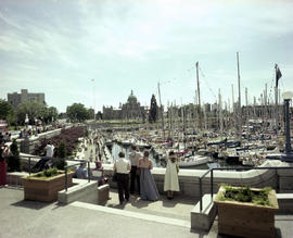 Swiftsure boats, the Legislative Buildings and the causeway on Victoria's Inner Harbour