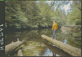 Fishing On Tlell River