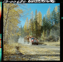 Logging Truck Near St. Mary's Lake