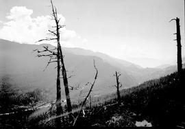 Garibaldi Park Survey photograph.