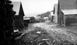 View Of Back Street, Barkerville