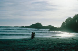 West Coast Near Tofino