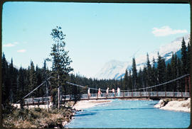 Paint Pots Bridge In Kootenay National Park