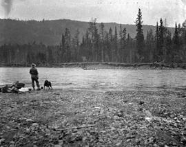Man and dog watching his fellows cross a river.