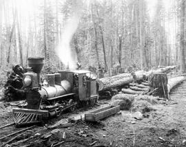 """Train of logs, Royal City Mills Camp, near Vancouver."""