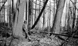 A.C. Pollard viewing the aftermath of a forest fire at Pondesy Lake.