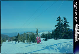 Skiing, Mount Arrowsmith