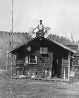Cabin on the Atlin-Quesnel telegraph line.