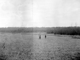 two surveyors standing in a meadow along the shore of Mud Lakes.