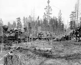 Forest Service; steam-loading yellow pine on rail cars.