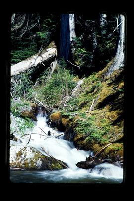 Waterfalls Along The Duffy Lake Road