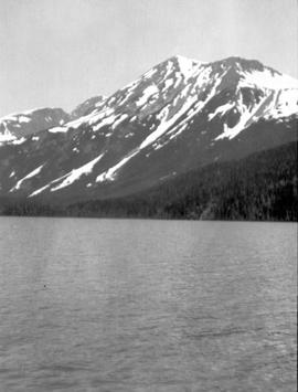 Southwest arm at the head of Morice Lake.