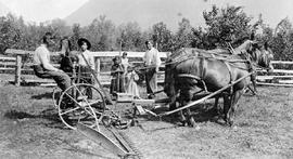 Harvest time at Bella Coola