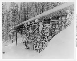 Lumberton. BC Spruce Mills Logging Flume In Winter