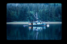 Fish Boat At Thompson Harbour  Queen Charlotte Islands
