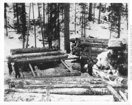 Lumberton. BC Spruce Mills Logging Operation