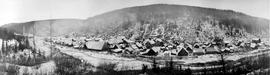 View of Barkerville.