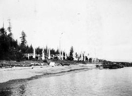 Totem poles at Tanoo,Queen Charlotte Islands; from the Department of Mines album, 1901, page 63, ...