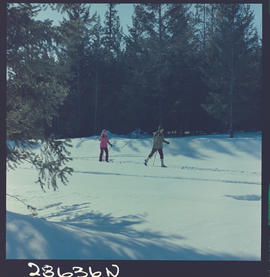 Cross Country  Skiing At Goose Lake