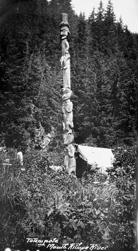 Totem pole at Kitlope.