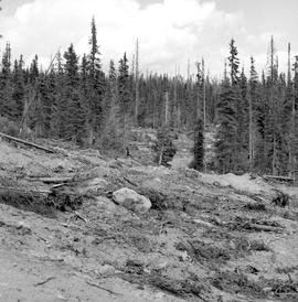 Proposed Road To T.S.X. 52815 Clearwatrer Timber Co.