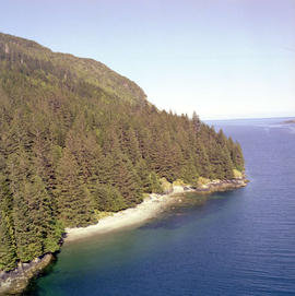Aerial, Chaatl Queen Charlotte Islands