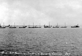 Richmond; BC Canneries; sailboats towed by a launch.