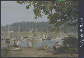 Marina At Masset Harbour Queen Charlotte Islands