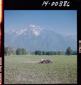 Farm Scene Near Agassiz