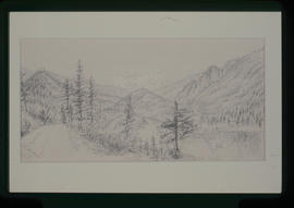 Fraser River Looking Towards Siskiyou Flat.