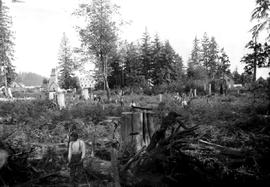 Clearing Land At Sechelt