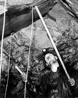 Cominco Sullivan Mine; Miner Loading A Drill Hole; Kimberley.