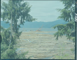 Booming Grounds, Alliford Bay Queen Charlotte Islands